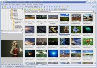 FastStone Image Viewer 4.8 Portable