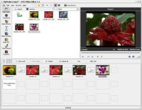AVS Video Editor 7.1.1.259 Portable